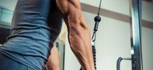 exercice isolation bras